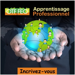 Apprentissage professionnel button
