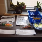 More manipulatives and data tracking